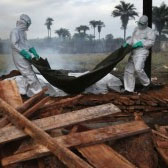 Ebola Epidemic: What We Know, The Politics and Treatment